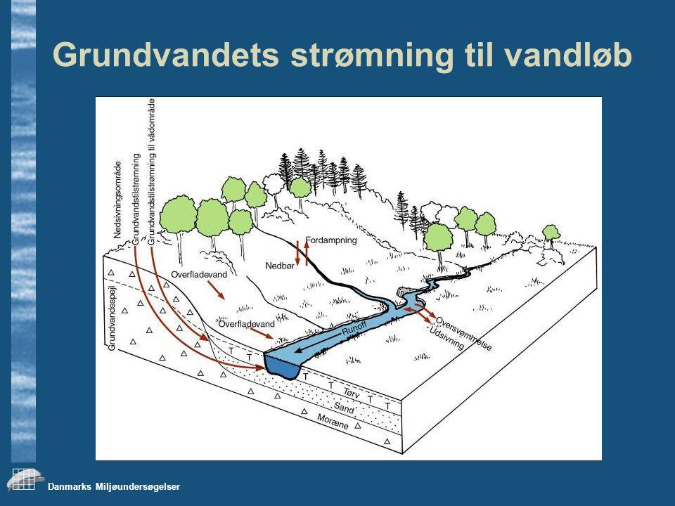 Danmarks Miljøundersøgelser Grundvandets strømning til vandløb