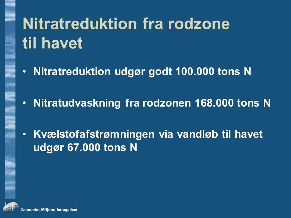 Danmarks Miljøundersøgelser Nitratreduktion fra rodzone til havet Nitratreduktion udgør godt 100.000 tons N Nitratudvaskning fra rodzonen 168.000 tons N Kvælstofafstrømningen via vandløb til havet udgør 67.000 tons N