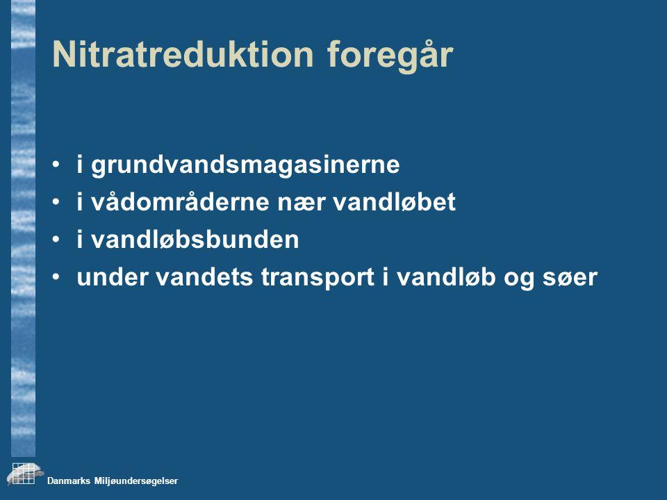 Danmarks Miljøundersøgelser Nitratreduktion foregår i grundvandsmagasinerne i vådområderne nær vandløbet i vandløbsbunden under vandets transport i vandløb og søer