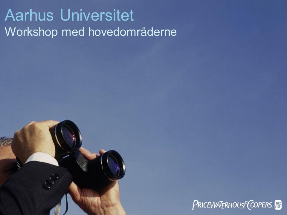 Aarhus Universitet Workshop med hovedområderne