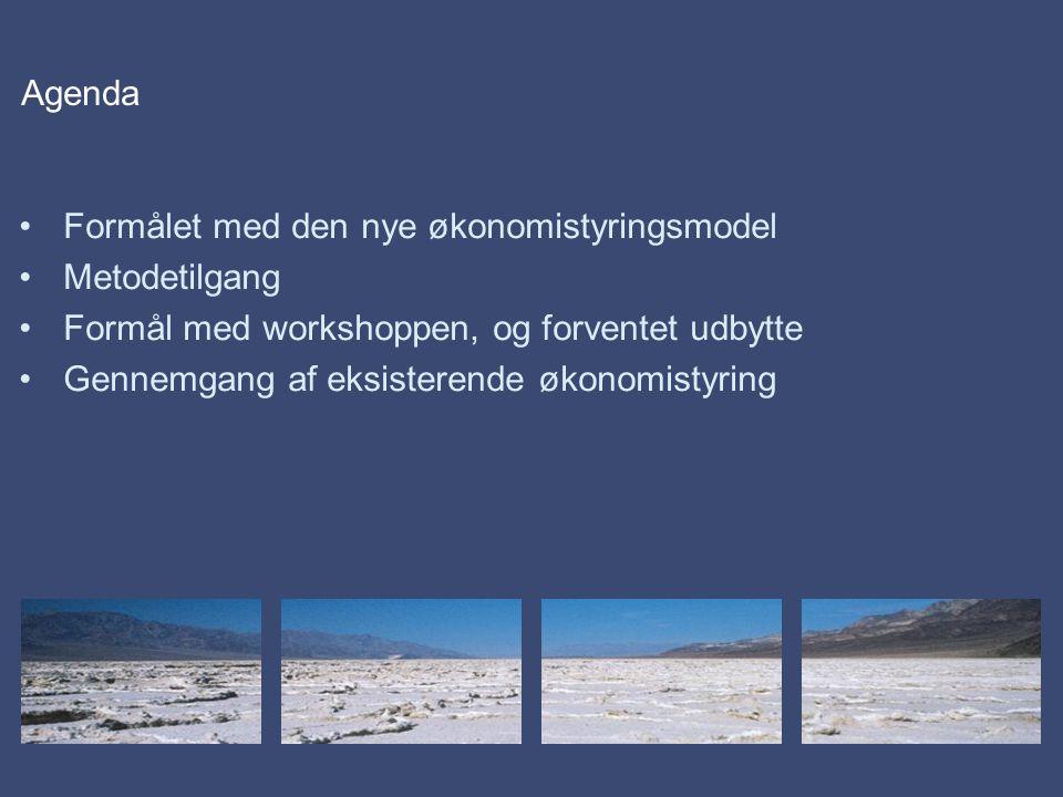 Agenda Formålet med den nye økonomistyringsmodel Metodetilgang Formål med workshoppen, og forventet udbytte Gennemgang af eksisterende økonomistyring