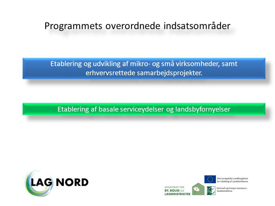 Programmets overordnede indsatsområder Etablering og udvikling af mikro- og små virksomheder, samt erhvervsrettede samarbejdsprojekter.