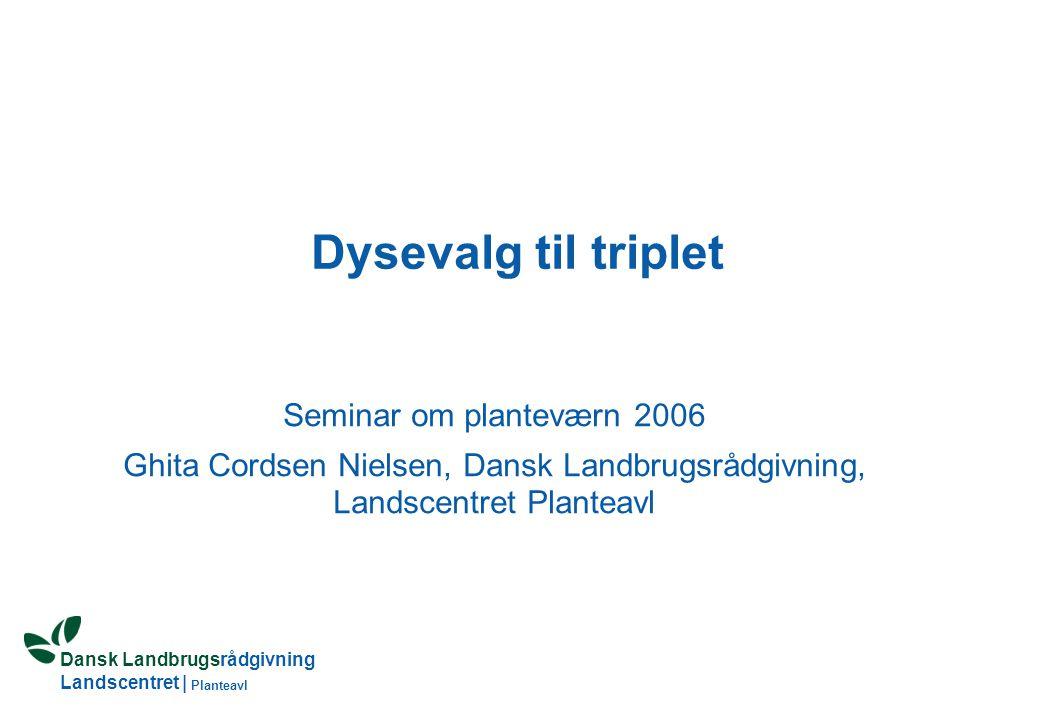 Dansk Landbrugsrådgivning Landscentret | Planteavl Dysevalg til triplet Seminar om planteværn 2006 Ghita Cordsen Nielsen, Dansk Landbrugsrådgivning, Landscentret Planteavl
