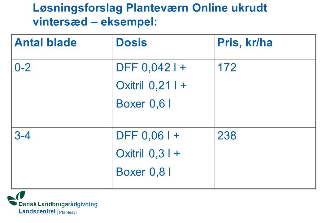 Dansk Landbrugsrådgivning Landscentret | Planteavl Løsningsforslag Planteværn Online ukrudt vintersæd – eksempel: Antal bladeDosisPris, kr/ha 0-2DFF 0,042 l + Oxitril 0,21 l + Boxer 0,6 l 172 3-4DFF 0,06 l + Oxitril 0,3 l + Boxer 0,8 l 238