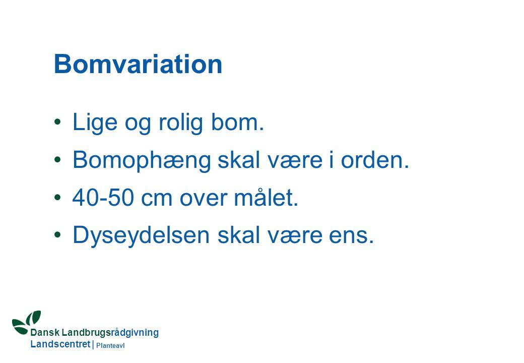 Dansk Landbrugsrådgivning Landscentret | Planteavl Bomvariation Lige og rolig bom.