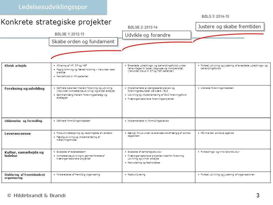 3 Konkrete strategiske projekter Udvikle og forandre Justere og skabe fremtiden BØLGE 1: 2012-13 BØLGE 2: 2013-14 BØLG 3: 2014-15 Klinisk arbejde Afklaring af HF, RF og HSF Faglig trimning og fælles holdning – herunder best practice Pakkeforløb til HF-patienter Ensartede udrednings- og behandlingsforløb under hensyntagen til alder, diagnose og kompleksitet (herunder tilbud til RF og HSF patienter) Fortsat udvikling og justering af ensartede udrednings- og behandlingsforløb Forskning og udvikling Definere balancen mellem forskning og udvikling (herunder kompetenceudvikling) og andet arbejde Sammenhæng mellem forskningsstrategi og strategien Implementere evidensbaseret praksis og forskningsresultater på tværs i BUC Udvikling og implementering af BUC forskningsfond Tværorganisatoriske forskningsprojekter Udbrede forskningsindsatsen Uddannelse og formidling Definere formidlingsindsatsenImplementere ny formidlingspraksis Leveranceevne Produktivitetsøgning og nedbringelse af ventetid Færdigudvikling og implementering af målstyringsmodel Særligt fokus under leveranceevne afhængig af politisk dagsorden Påvirke den politiske agenda Kultur, samarbejde og ledelse Skabelse af ledelsesteam Kompetenceudvikling til gennemførelse af tværorganisatoriske projekter Skabelse af samarbejdskultur Tværorganisatoriske projekter indenfor forskning, udvikling og klinisk arbejde Rekruttering og fastholdelse Forbedrings- og innovationskultur Etablering af fremtidssikret organisering Forberedelse af fremtidig organiseringRestruktureringFortsat udvikling og justering af organisationen Skabe orden og fundament Ledelsesudviklingsspor
