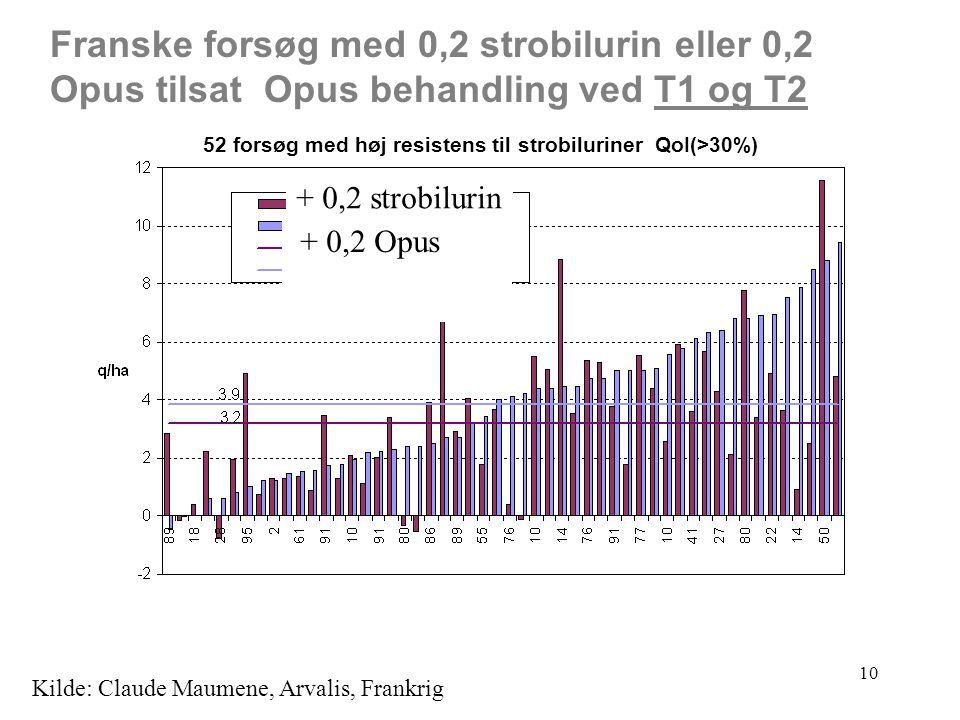 10 52 forsøg med høj resistens til strobiluriner QoI(>30%) Franske forsøg med 0,2 strobilurin eller 0,2 Opus tilsat Opus behandling ved T1 og T2 Kilde: Claude Maumene, Arvalis, Frankrig + 0,2 strobilurin + 0,2 Opus