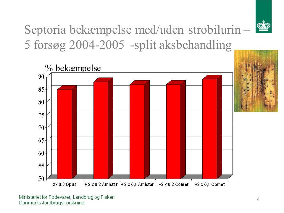 4 Ministeriet for Fødevarer, Landbrug og Fiskeri Danmarks JordbrugsForskning Septoria bekæmpelse med/uden strobilurin – 5 forsøg 2004-2005 -split aksbehandling % bekæmpelse
