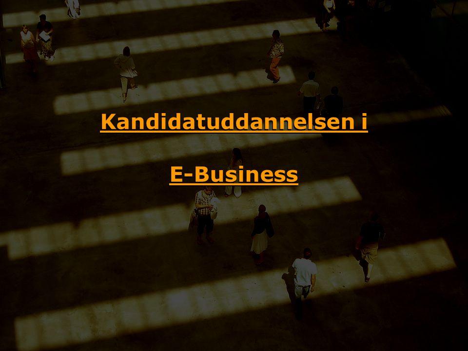 Kandidatuddannelsen i E-Business