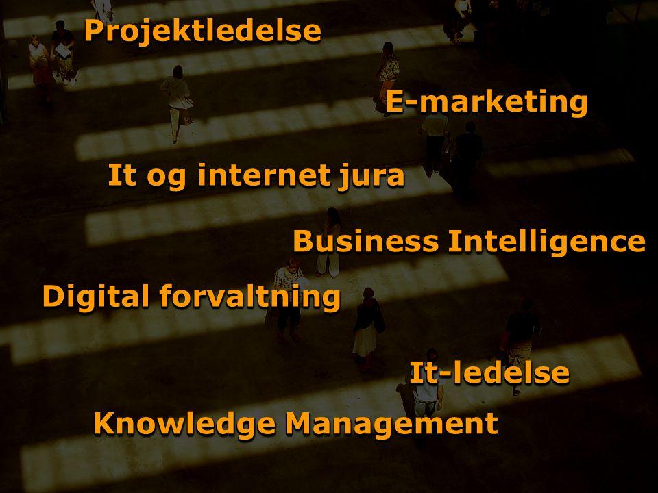 ProjektledelseProjektledelse Business Intelligence It og internet jura It-ledelseIt-ledelse Knowledge Management Digital forvaltning E-marketingE-marketing