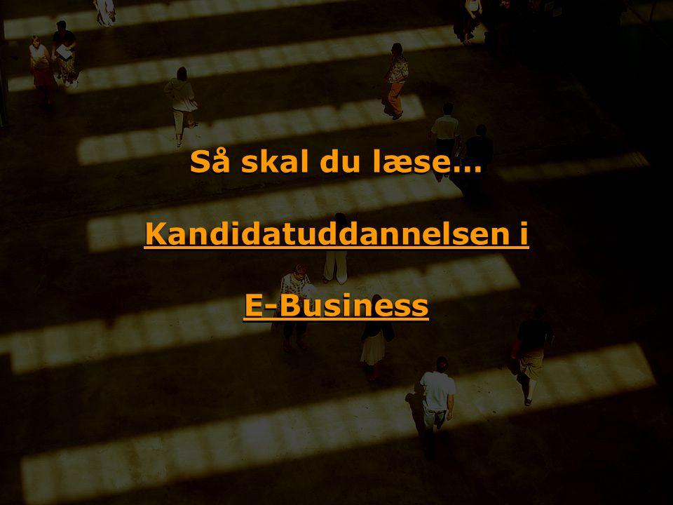 Så skal du læse… Kandidatuddannelsen i E-Business