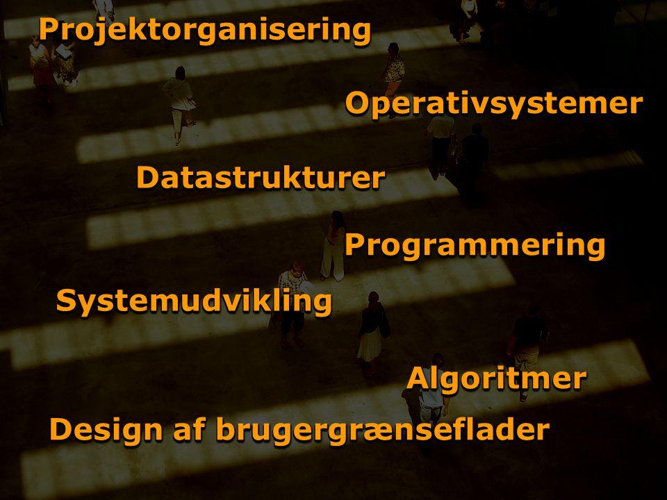 ProjektorganiseringProjektorganisering ProgrammeringProgrammering DatastrukturerDatastrukturer AlgoritmerAlgoritmer Design af brugergrænseflader SystemudviklingSystemudvikling OperativsystemerOperativsystemer