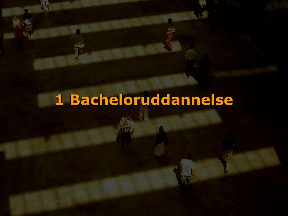 1 Bacheloruddannelse