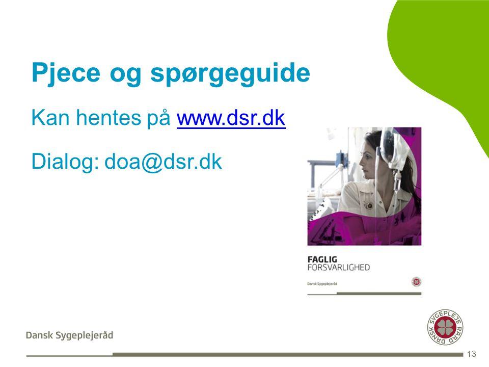 BLANK 13 Pjece og spørgeguide Kan hentes på www.dsr.dkwww.dsr.dk Dialog: doa@dsr.dk 13