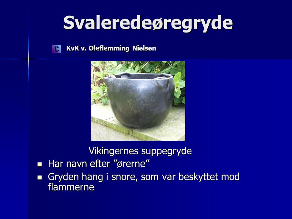 Svaleredeøregryde KvK v. Oleflemming Nielsen Svaleredeøregryde KvK v.