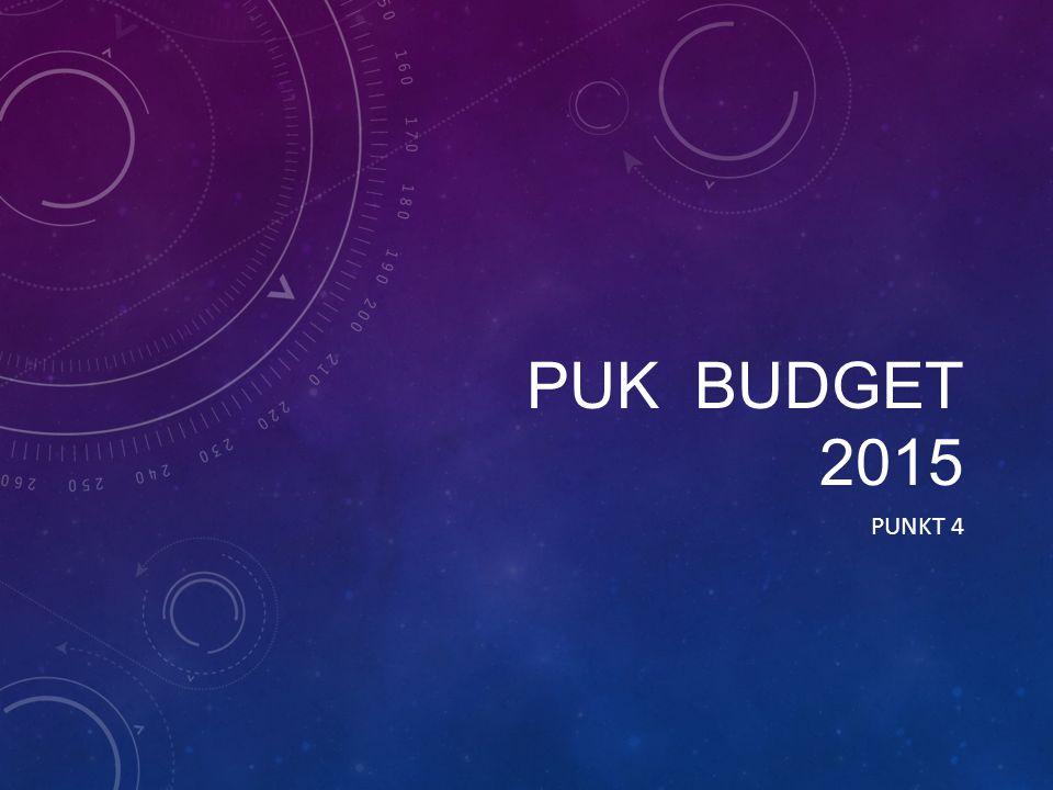 PUK BUDGET 2015 PUNKT 4