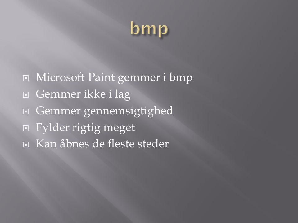  Microsoft Paint gemmer i bmp  Gemmer ikke i lag  Gemmer gennemsigtighed  Fylder rigtig meget  Kan åbnes de fleste steder