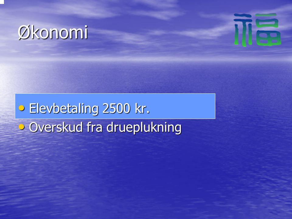 Økonomi Elevbetaling 2500 kr. Elevbetaling 2500 kr.