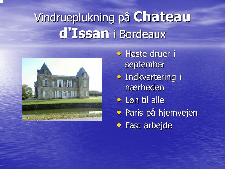 Vindrueplukning på Chateau d Issan i Bordeaux Høste druer i september Høste druer i september Indkvartering i nærheden Indkvartering i nærheden Løn til alle Løn til alle Paris på hjemvejen Paris på hjemvejen Fast arbejde Fast arbejde