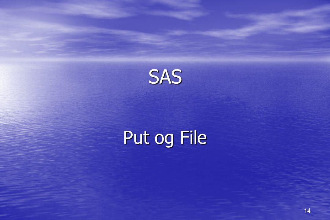 14 SAS Put og File