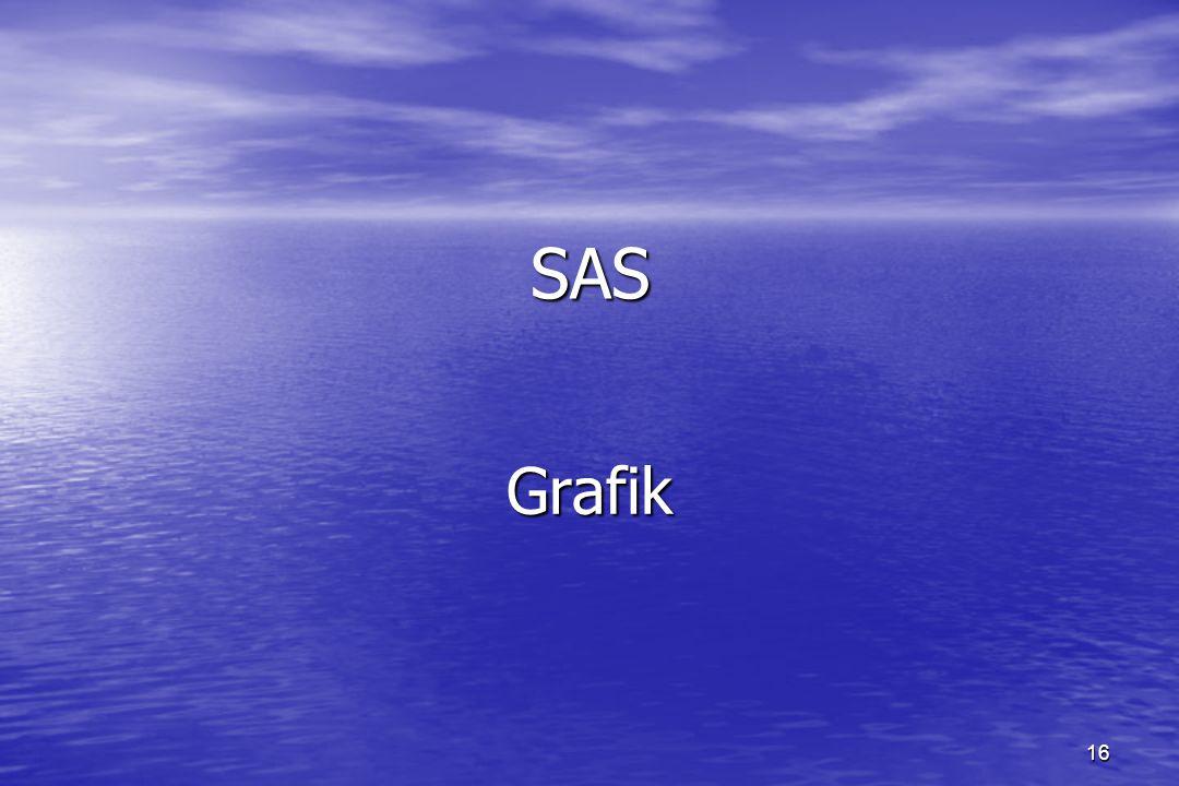 16 SAS Grafik