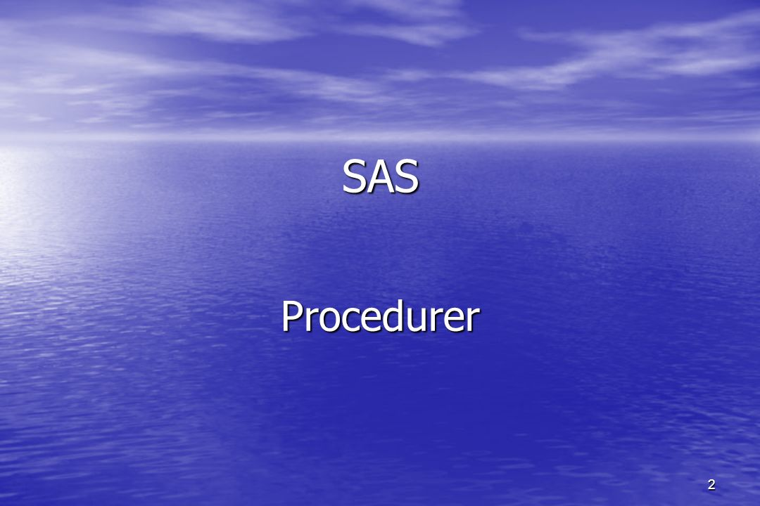 2 SAS Procedurer