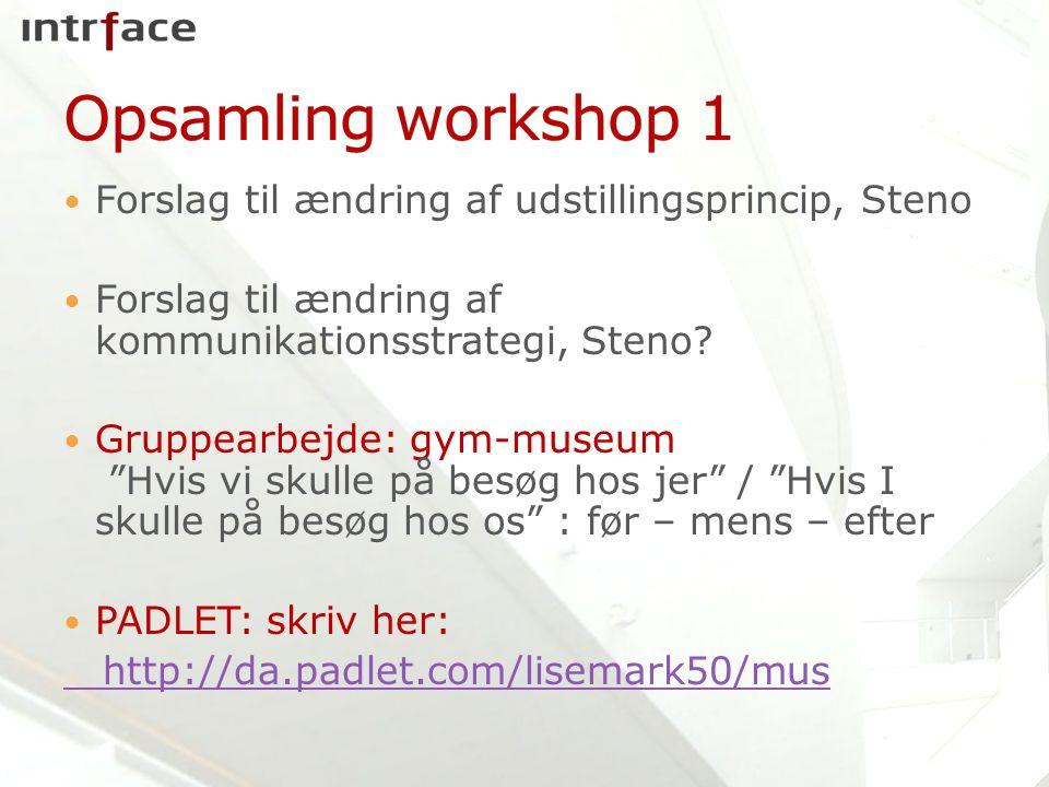 Forslag til ændring af udstillingsprincip, Steno Forslag til ændring af kommunikationsstrategi, Steno.