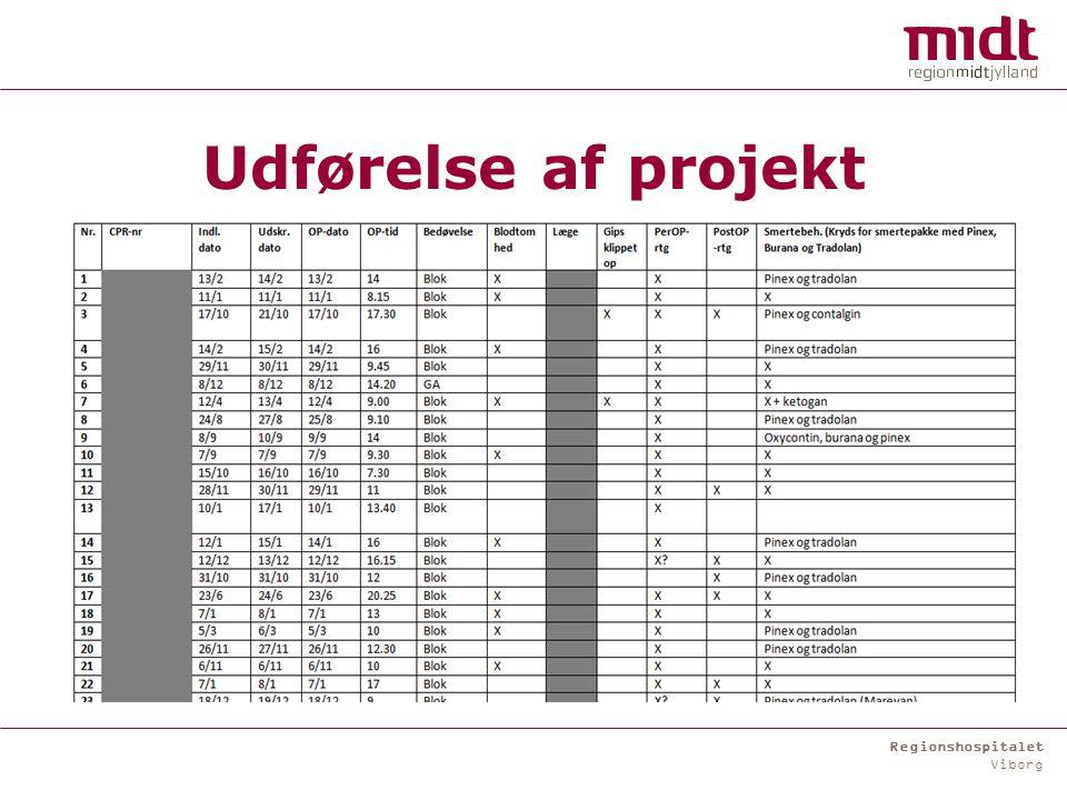 Regionshospitalet Viborg Udførelse af projekt