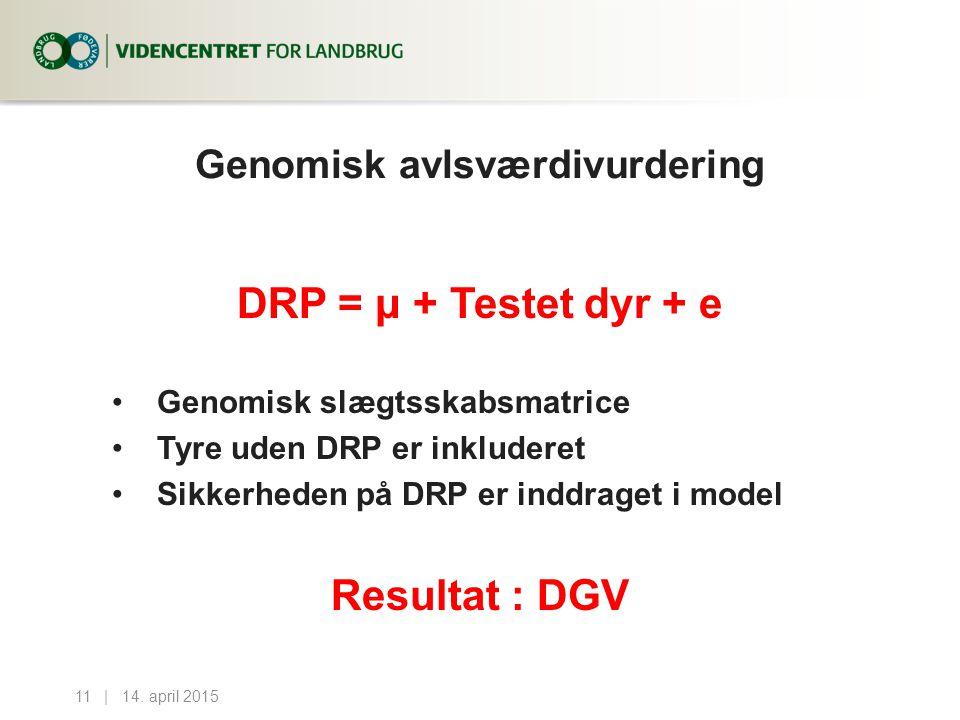 Genomisk avlsværdivurdering DRP = μ + Testet dyr + e Genomisk slægtsskabsmatrice Tyre uden DRP er inkluderet Sikkerheden på DRP er inddraget i model Resultat : DGV 14.