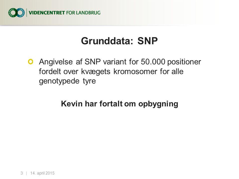 Grunddata: SNP Angivelse af SNP variant for 50.000 positioner fordelt over kvægets kromosomer for alle genotypede tyre Kevin har fortalt om opbygning 14.