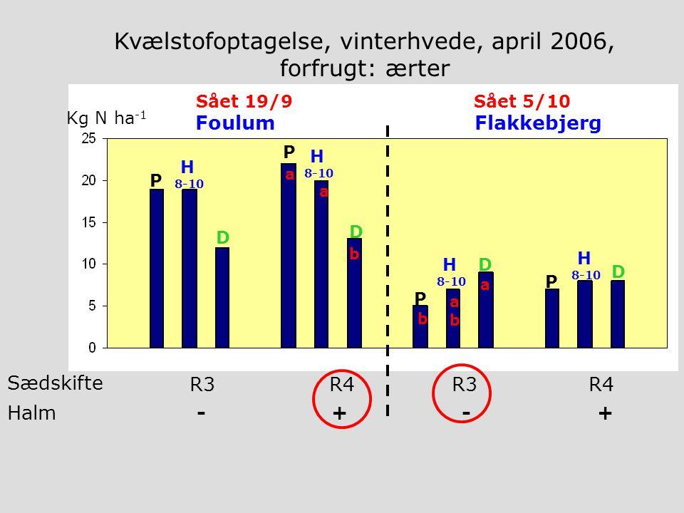 Halm - + - + R3R4R3R4 Sædskifte Kg N ha -1 FoulumFlakkebjerg P H 8-10 D P H 8-10 D P H 8-10 D P H 8-10 D Kvælstofoptagelse, vinterhvede, april 2006, forfrugt: ærter Sået 19/9 Sået 5/10 b a abab a a b
