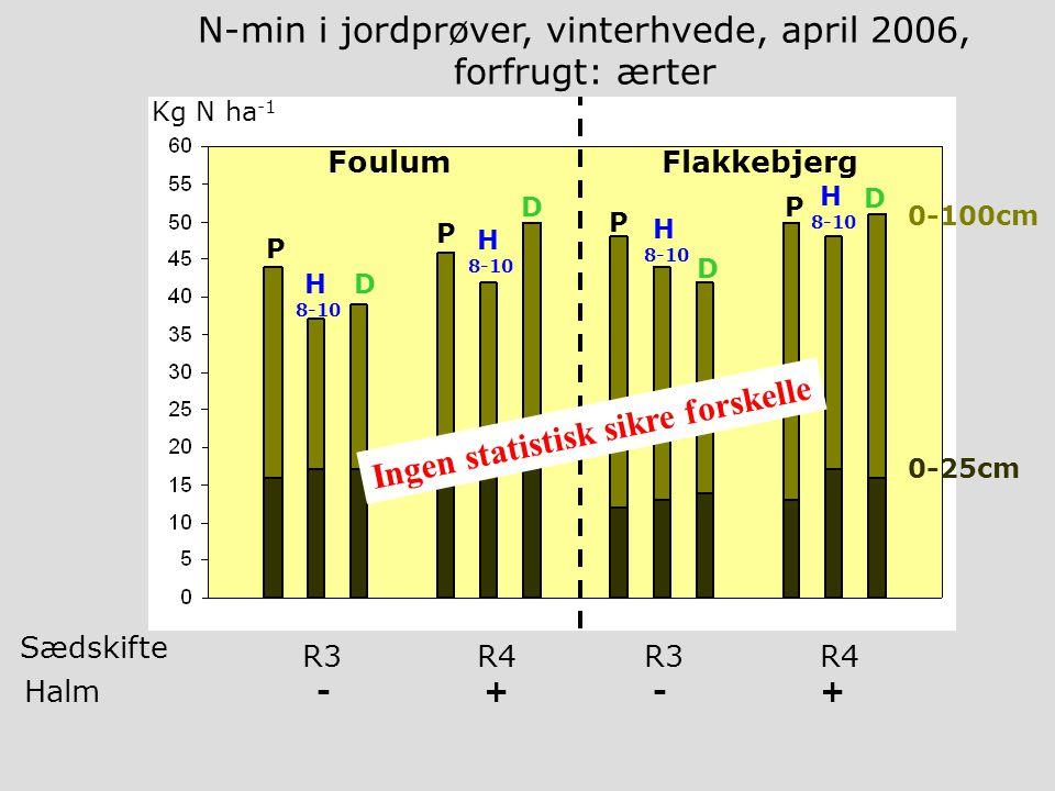 P H 8-10 D P H 8-10 D FoulumFlakkebjerg 0-100cm 0-25cm P H 8-10 D D H 8-10 P Kg N ha -1 N-min i jordprøver, vinterhvede, april 2006, forfrugt: ærter R3R4R3R4 Sædskifte Halm - + - + Ingen statistisk sikre forskelle