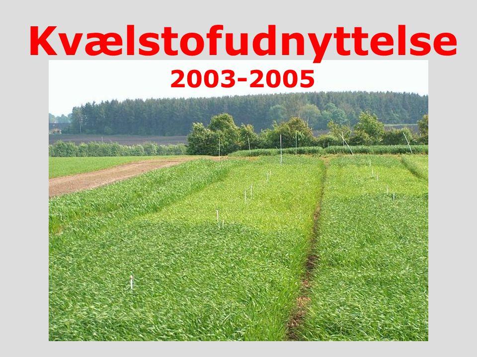 A A R H U S U N I V E R S I T E T Det Jordbrugsvidenskabelige Fakultet Kvælstofudnyttelse 2003-2005