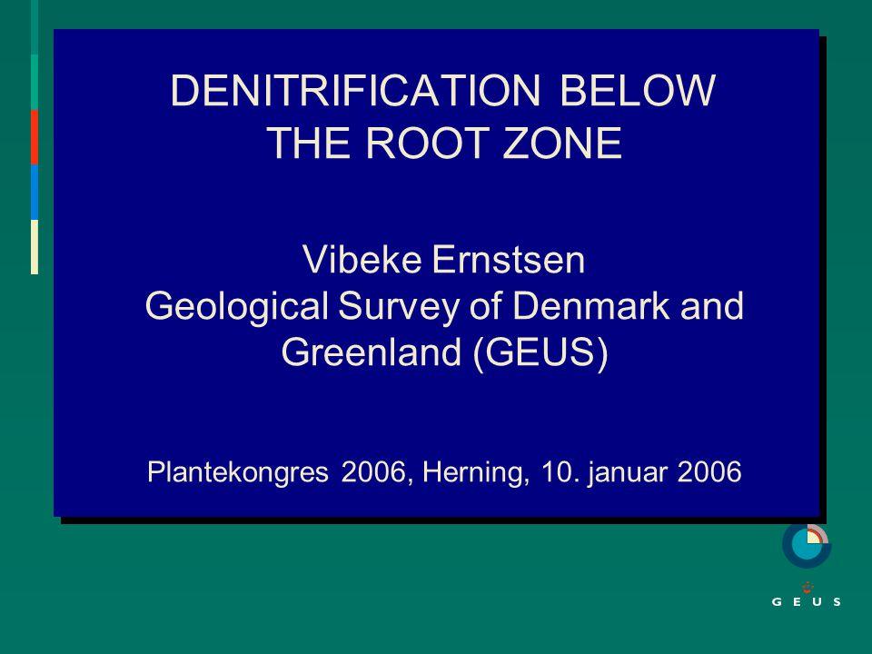 DENITRIFICATION BELOW THE ROOT ZONE Vibeke Ernstsen Geological Survey of Denmark and Greenland (GEUS) Plantekongres 2006, Herning, 10.