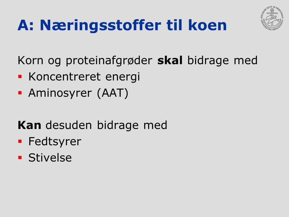 A: Næringsstoffer til koen Korn og proteinafgrøder skal bidrage med  Koncentreret energi  Aminosyrer (AAT) Kan desuden bidrage med  Fedtsyrer  Stivelse