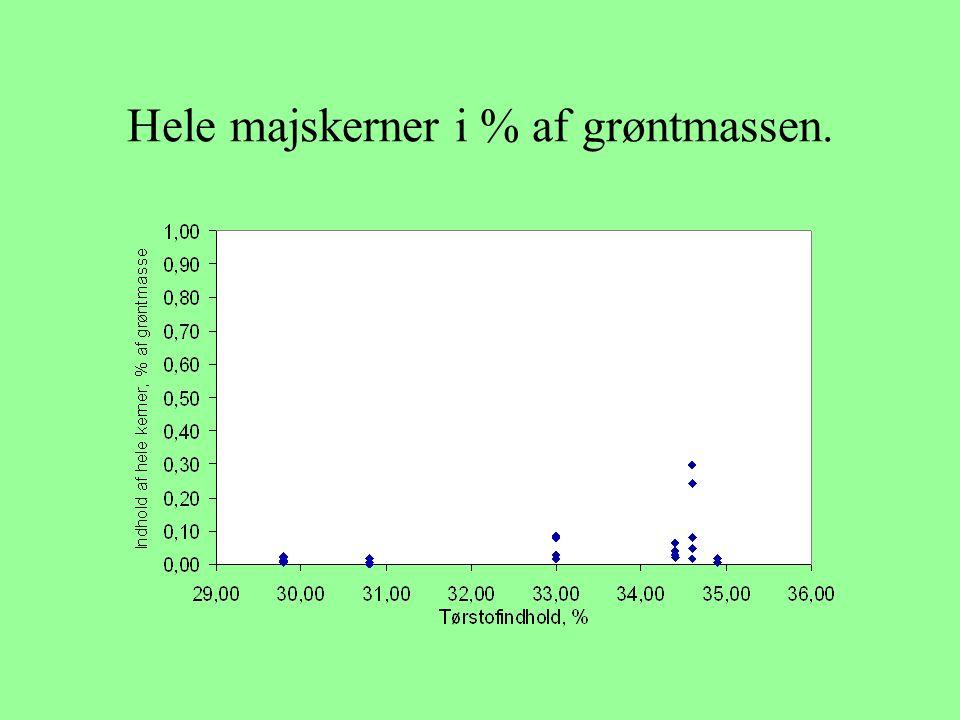 Hele majskerner i % af grøntmassen.