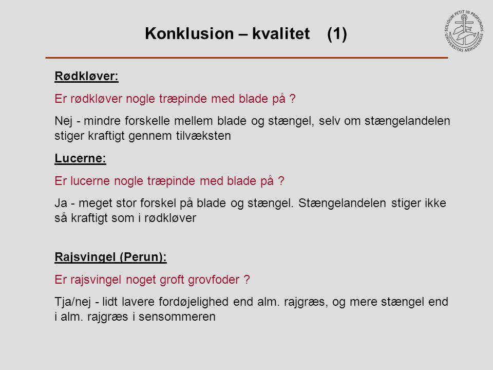 Konklusion – kvalitet (1) Rødkløver: Er rødkløver nogle træpinde med blade på .