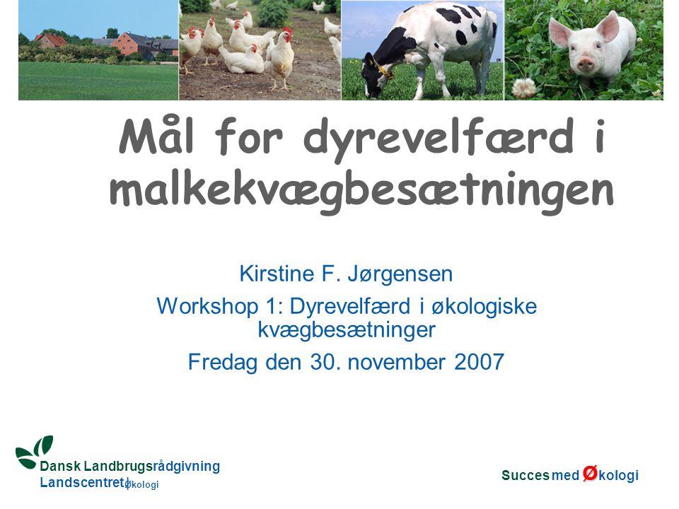 Dansk Landbrugsrådgivning Landscentret | Økologi Mål for dyrevelfærd i malkekvægbesætningen Kirstine F.