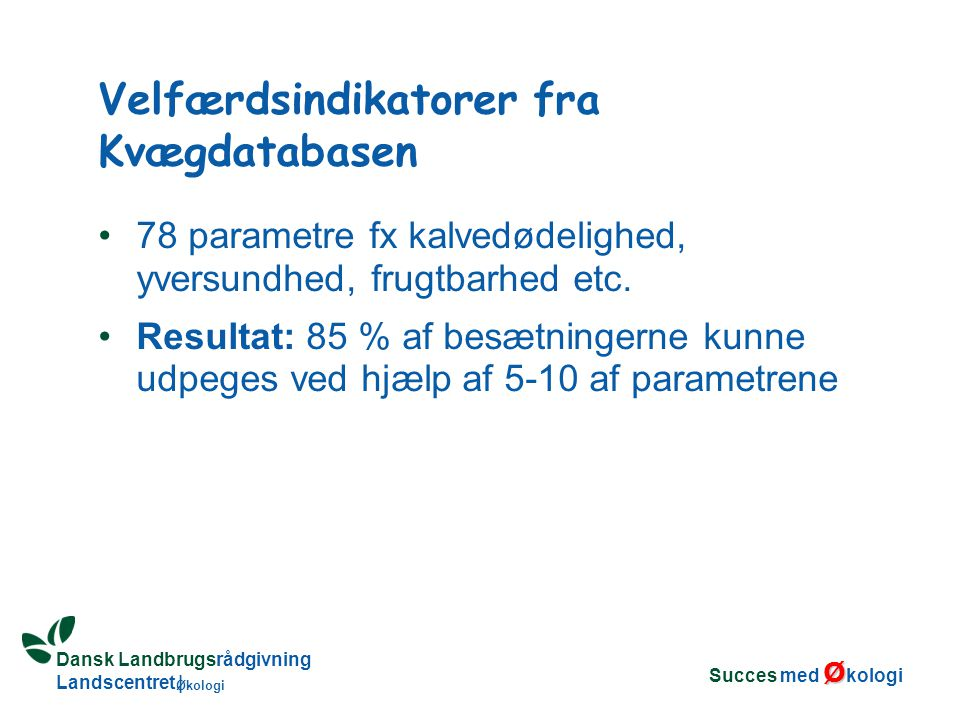 Dansk Landbrugsrådgivning Landscentret | Økologi Velfærdsindikatorer fra Kvægdatabasen 78 parametre fx kalvedødelighed, yversundhed, frugtbarhed etc.