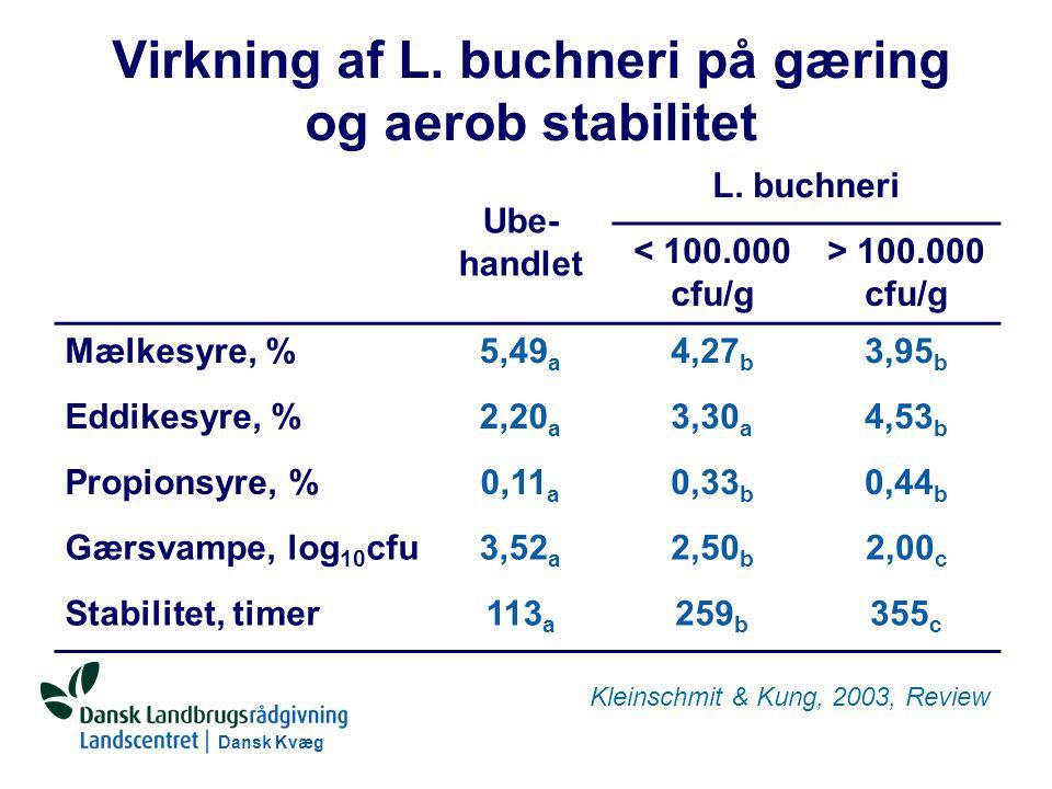 Dansk Kvæg S:\SUNDFODE\RUT\PowerPoint\Grovfoderseminar 2004 - Ensileringsmidler.ppt Virkning af L.