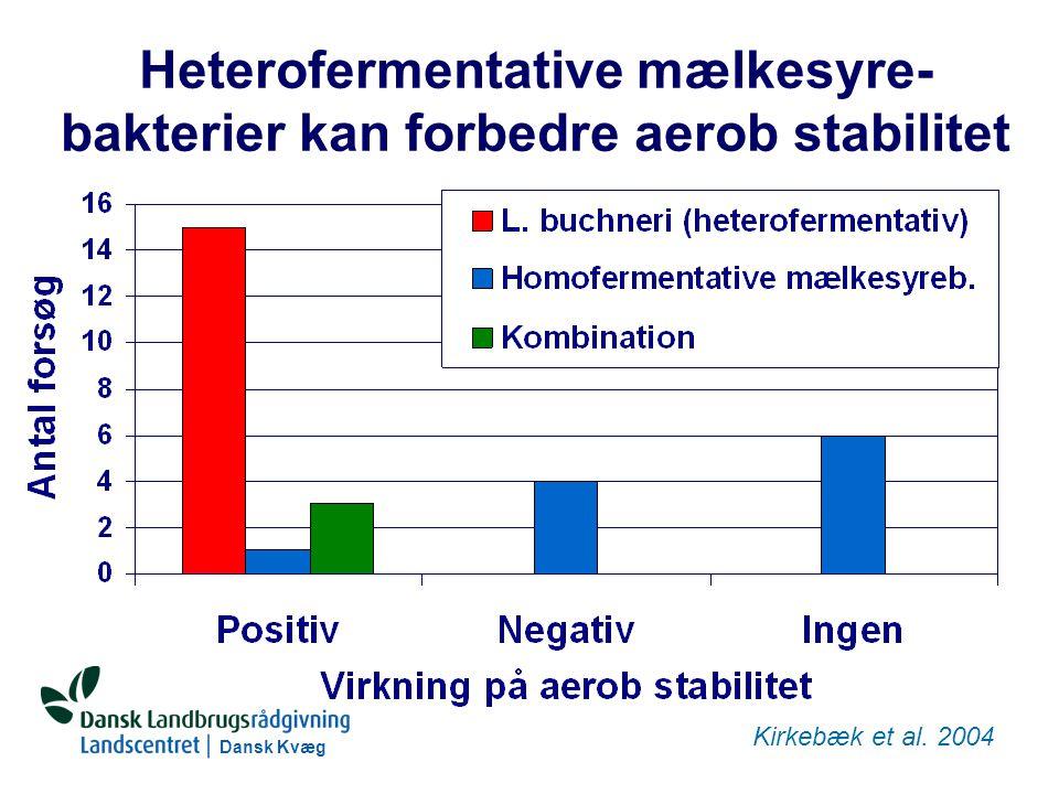 Dansk Kvæg S:\SUNDFODE\RUT\PowerPoint\Grovfoderseminar 2004 - Ensileringsmidler.ppt Heterofermentative mælkesyre- bakterier kan forbedre aerob stabilitet Kirkebæk et al.