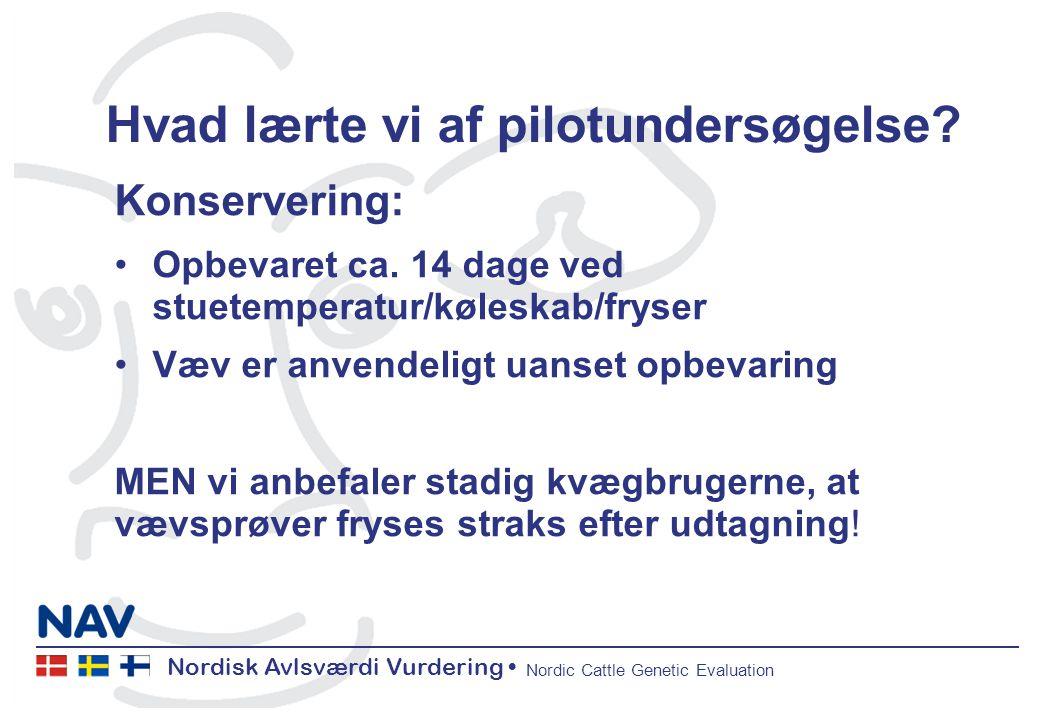 Nordisk Avlsværdi Vurdering Nordic Cattle Genetic Evaluation Hvad lærte vi af pilotundersøgelse.