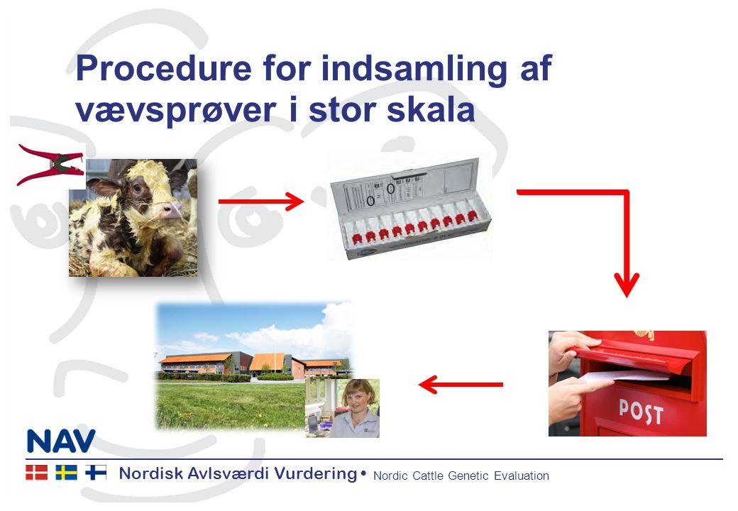 Nordisk Avlsværdi Vurdering Nordic Cattle Genetic Evaluation Procedure for indsamling af vævsprøver i stor skala