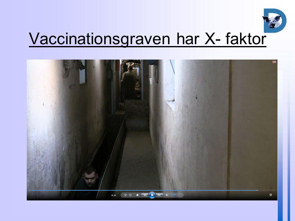 Vaccinationsgraven har X- faktor