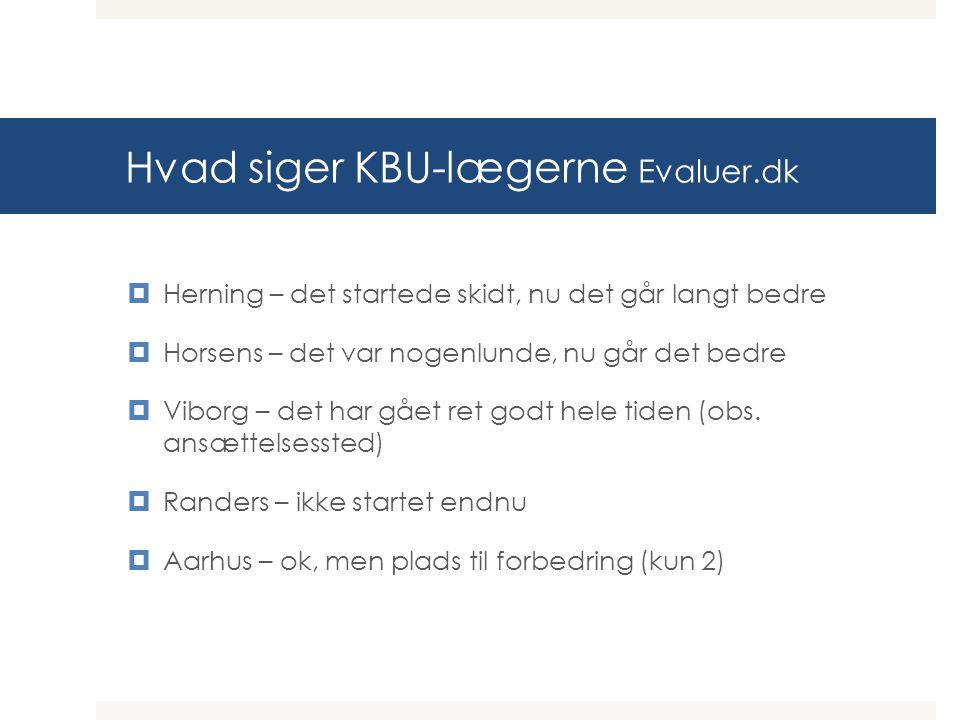 Hvad siger KBU-lægerne Evaluer.dk  Herning – det startede skidt, nu det går langt bedre  Horsens – det var nogenlunde, nu går det bedre  Viborg – det har gået ret godt hele tiden (obs.
