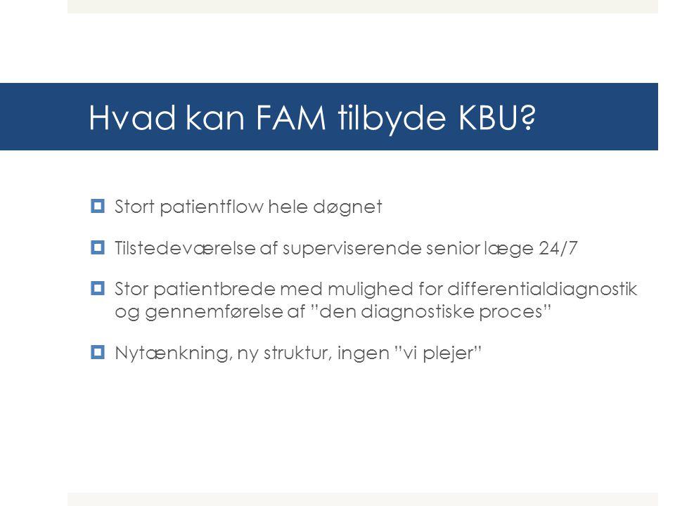 Hvad kan FAM tilbyde KBU.