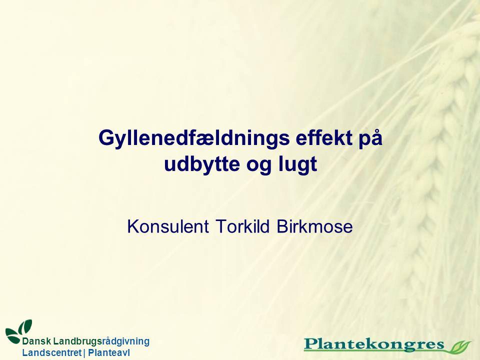 Gyllenedfældnings effekt på udbytte og lugt Konsulent Torkild Birkmose Dansk Landbrugsrådgivning Landscentret | Planteavl