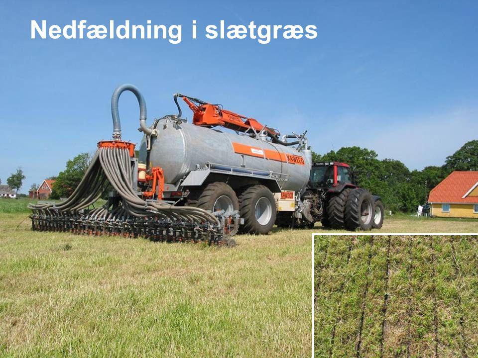 Dansk Landbrugsrådgivning Landscentret Nedfældning i slætgræs