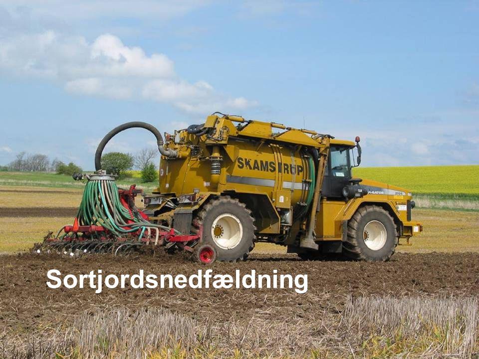 Dansk Landbrugsrådgivning Landscentret Sortjordsnedfældning