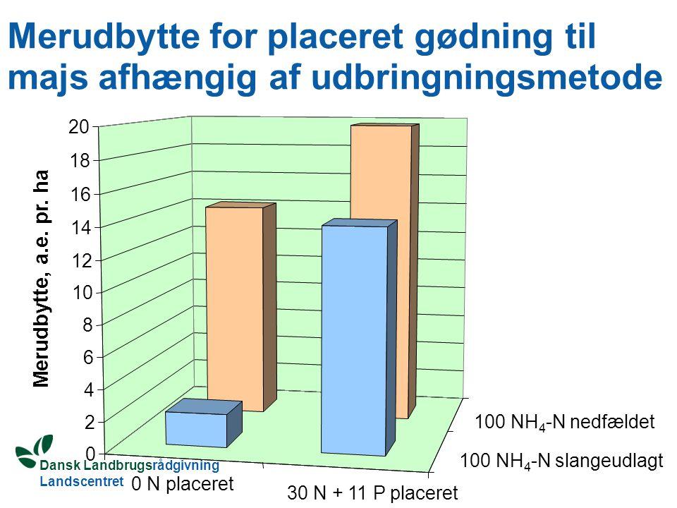 Dansk Landbrugsrådgivning Landscentret Merudbytte for placeret gødning til majs afhængig af udbringningsmetode Merudbytte, a.e.